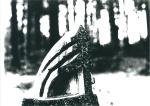 1990-03:04- Souche de sapin, Bretigny s:Morrens, VD
