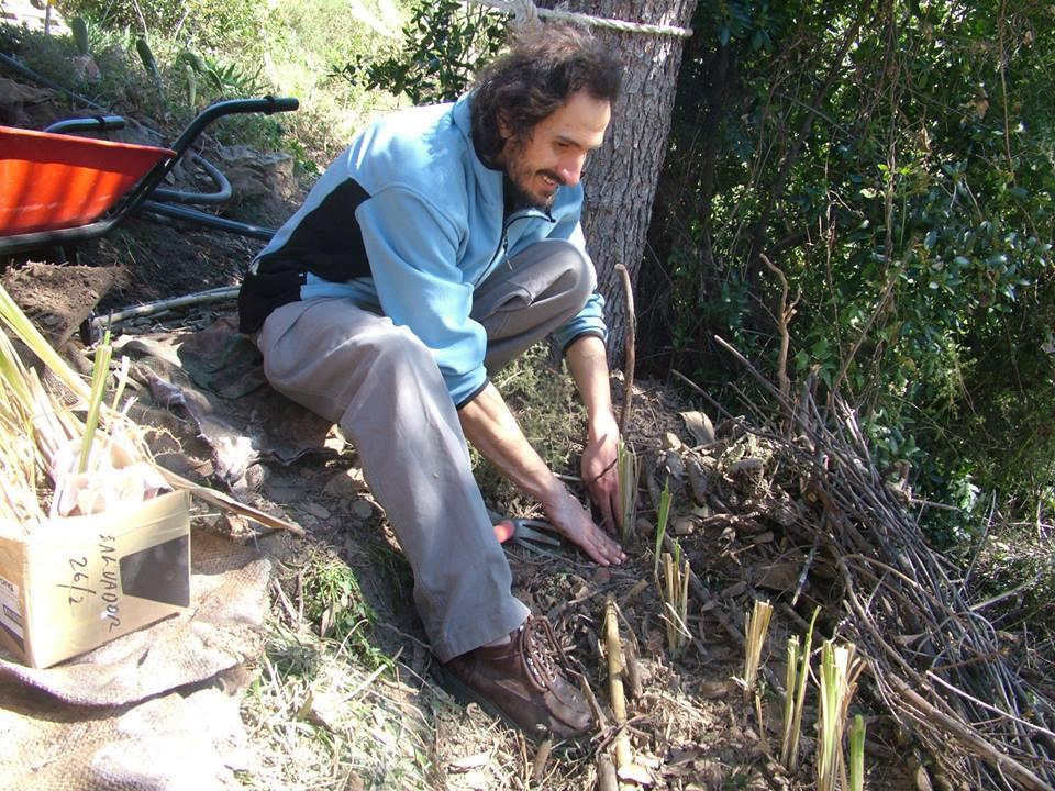 Alessandro en accion, formador del curso de permacultura - Alessandro en action, formateur du cours de permaculture