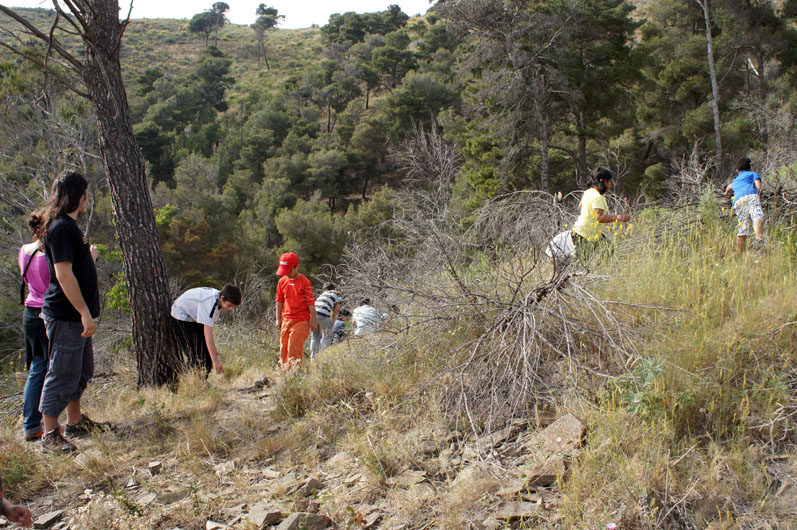 Los ninos buscan pinas... - les enfants cherchent des pommes de pin...