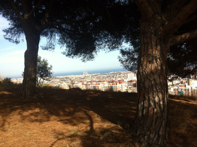 entre los pinos, la ciudad se extiende hacia el mar - entre les pins, la ville s'étend jusqu'à la mer