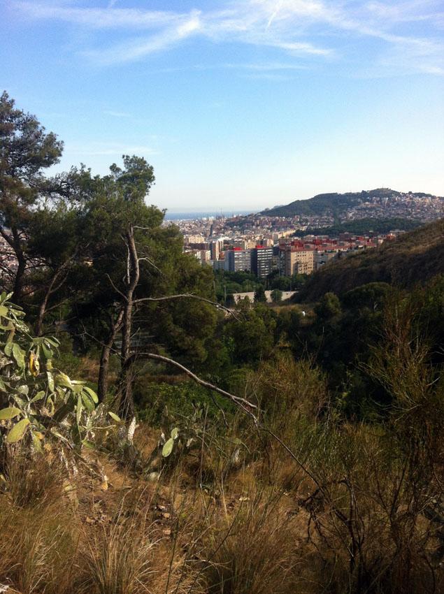 en el camino a las montañas en el horizonte, aparece la ciudad - sur le chemin de la montagne, à l'horizon, la ville apparaît